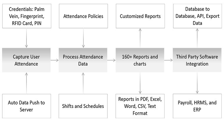 Time Attendence Model
